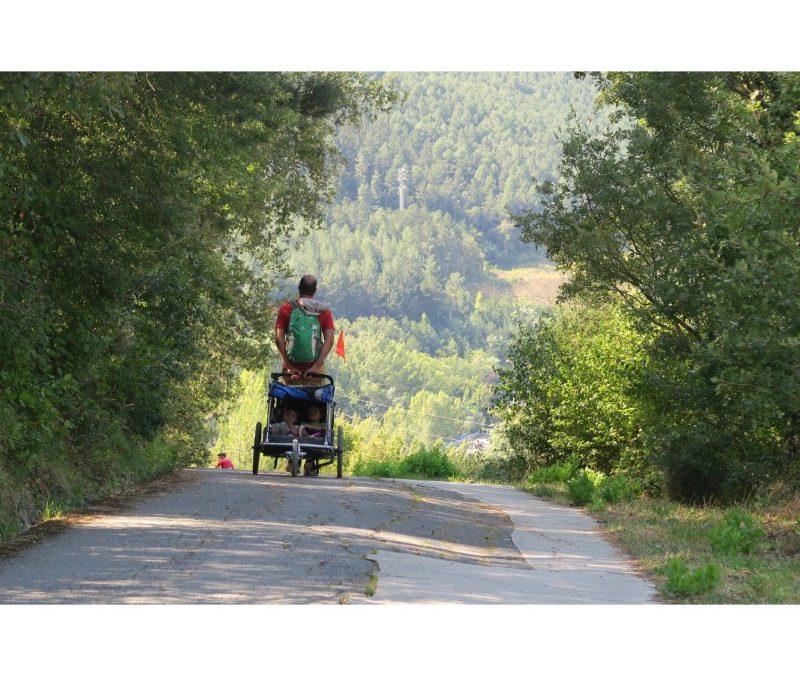 Caminante no hay camino… Salvo el de Santiago