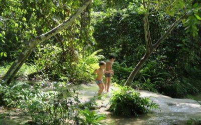 Boa Thong – Las Cascadas pegajosas de Chiang Mai