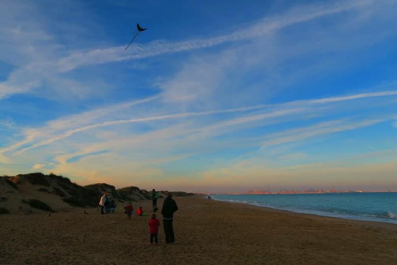 Cometas en la playa